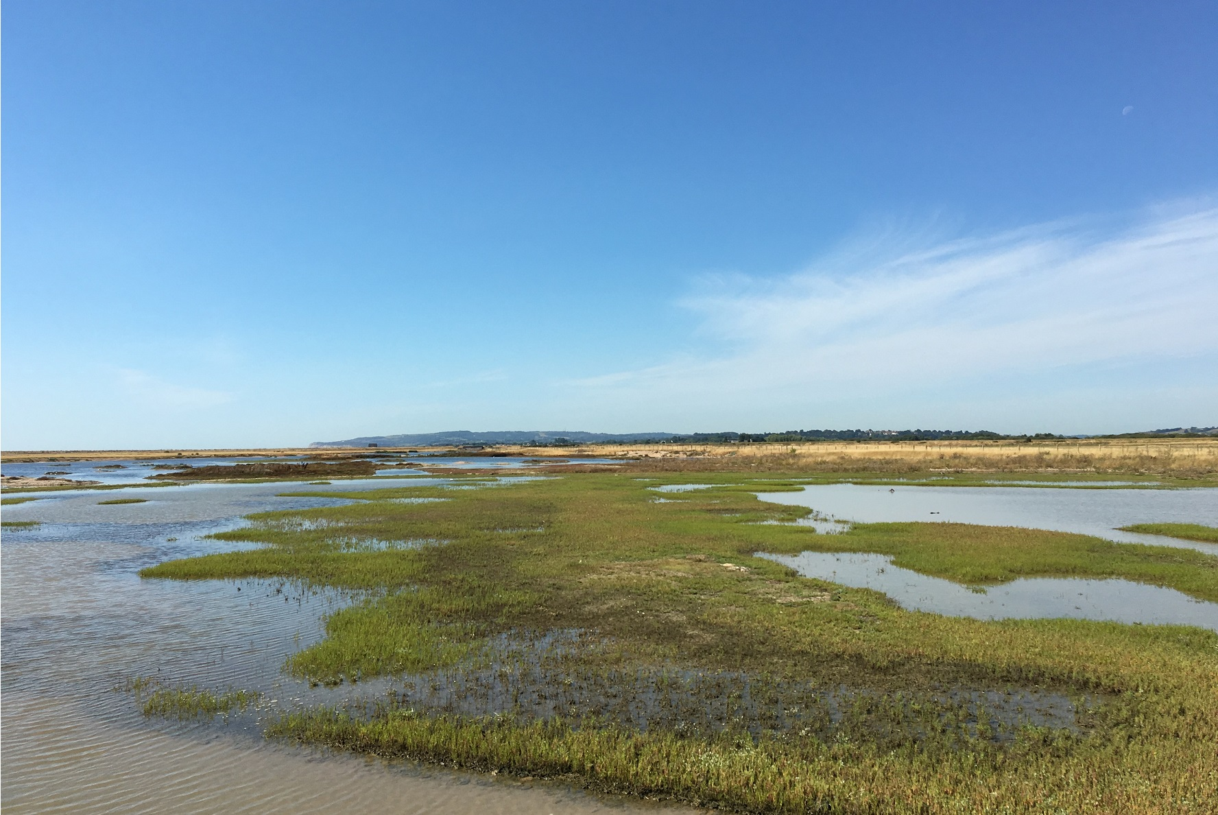 Rye Harbour Nature Reserve, Discovery Centre works underway